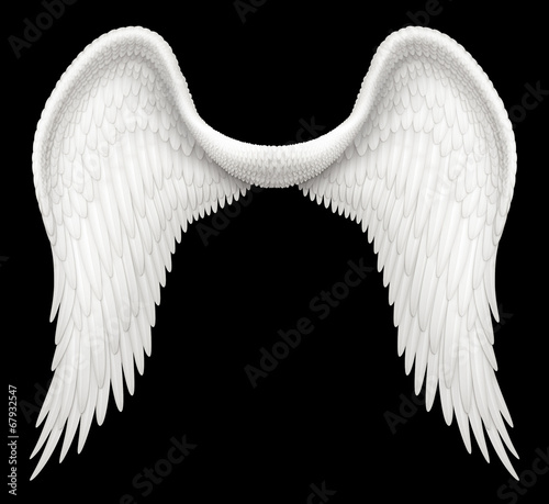 Fotografija Angel Wings isolated against black background