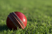 Red Cricket Ball On Green Grass