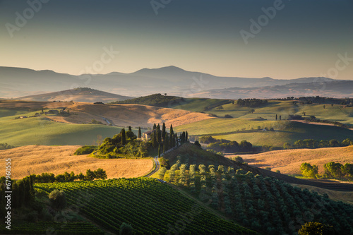 Poster Landschap Tuscany landscape in golden morning light, Val d'Orcia, Italy