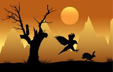 Hawk Hunting Hare At Sunset Si...