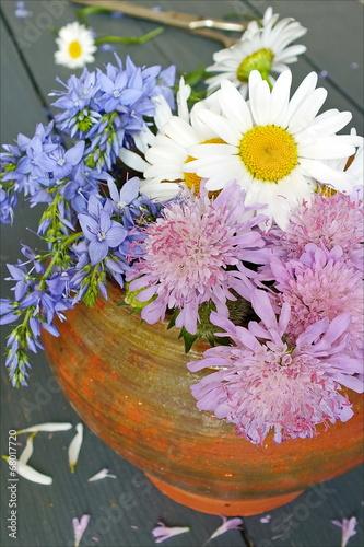 Fototapety, obrazy: Цветы луговые