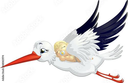 stork #68063974