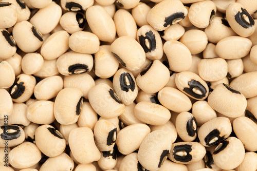 Fényképezés  Black eyed Beans