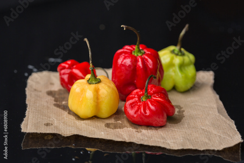 Photo Pimenta Antillas hot chili pepper