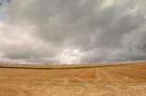 Chmury deszczowe nad uprawami