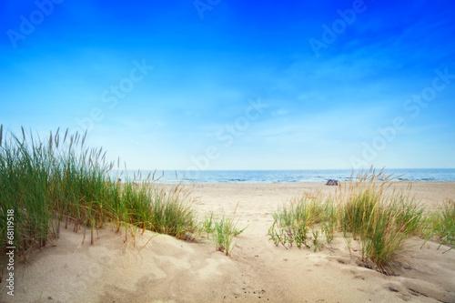 Naklejka premium Spokojna plaża z wydmami i zieloną trawą. Spokojny ocean