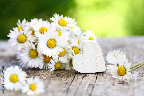 Foto op Canvas Madeliefjes Gänseblümchen & weißes Herz