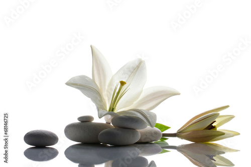 Foto op Aluminium Waterlelies lily and stones