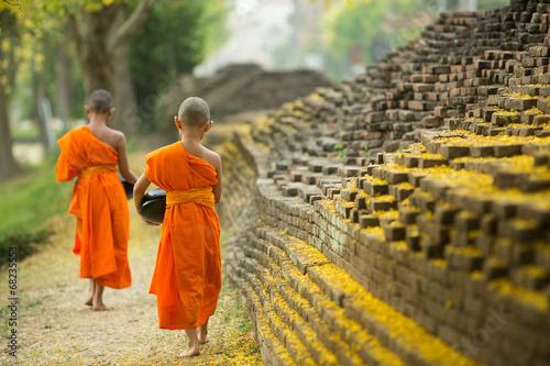 Stampa su Tela Buddhist Monk walking for receive food