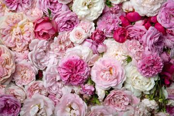 Fototapeta Roses