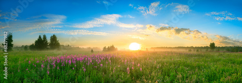 Foto op Plexiglas Landschappen landscape with the sunrise, a blossoming meadow panorama