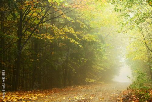 Keuken foto achterwand Baksteen Mountain road in autumn colours
