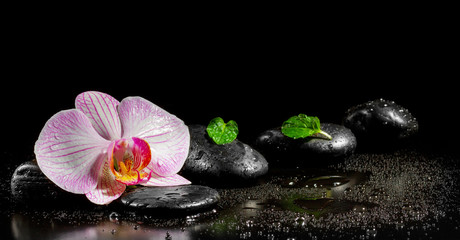 Obraz na Plexi Orchid flower with mint leaves and zen stones on black backgroun