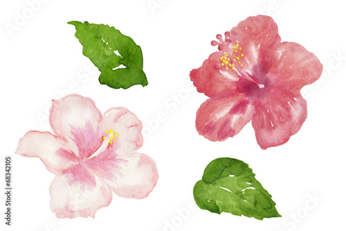 japonski-kwiat