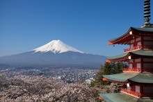 View Of Mountain Fuji In Sprin...