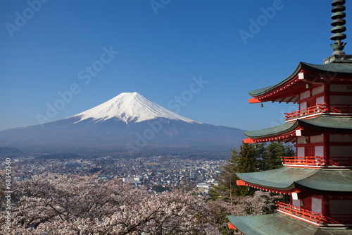 Fototapeta view of mountain fuji  from chureito pagoda