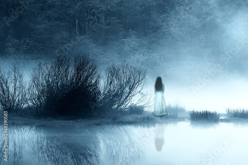 Mysterious Woman in the Mist Poster
