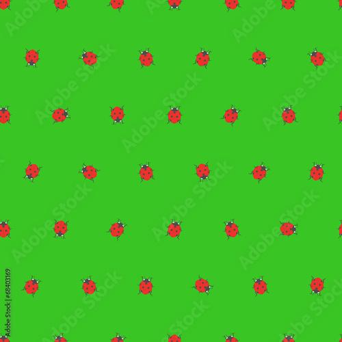 Foto op Canvas Lieveheersbeestjes ladybugs