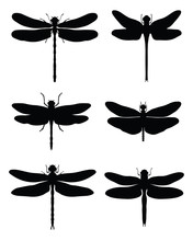 Black Silhouettes Of Dragonfli...