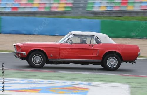 Fotografie, Obraz  Mustang à Magny-Cours