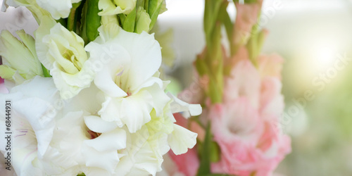 beautiful bouquet of white gladioluses, on green background Canvas Print