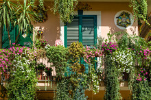 Traditional Italian House Decorated By Flowers