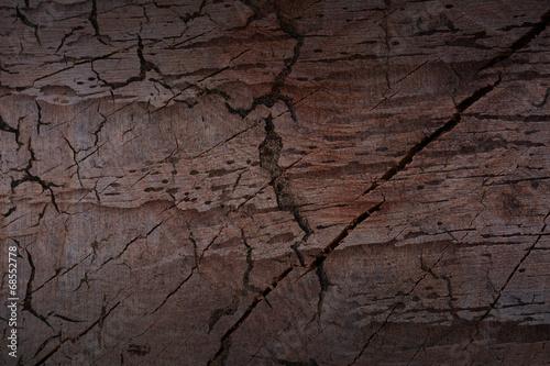 Photo sur Toile Les Textures Old wood background