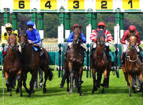 Fotografie, Tablou York Races