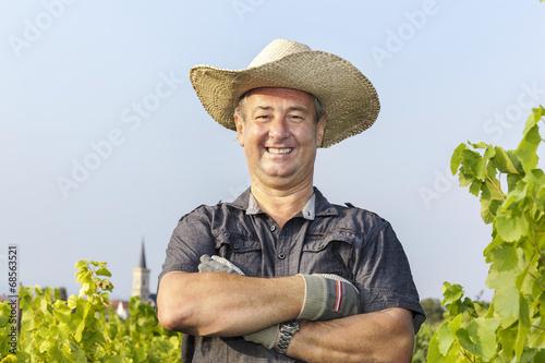 Fotografía  in the Vineyard