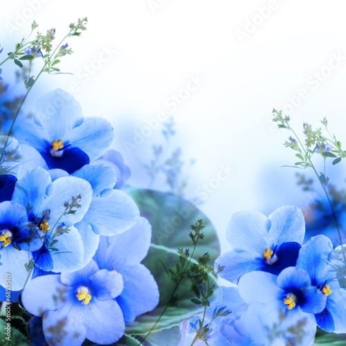 Bouquet of spring violets, floral background