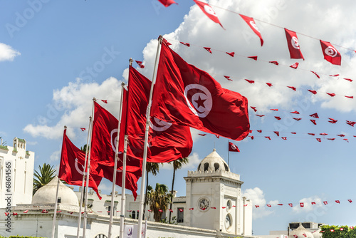 Photo sur Aluminium Tunisie BanderasTunez