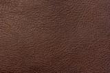 Fototapeta Zwierzęta - Texture of leather