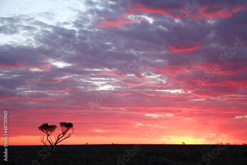 Printed kitchen splashbacks Australia Sunset on the Nullarbor Plain