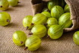 green gooseberries on fabric background