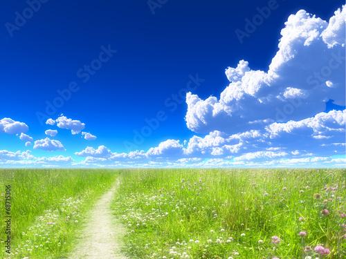 Fotografie, Obraz  青空と草原