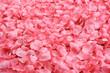 canvas print picture - Petali rosa finti