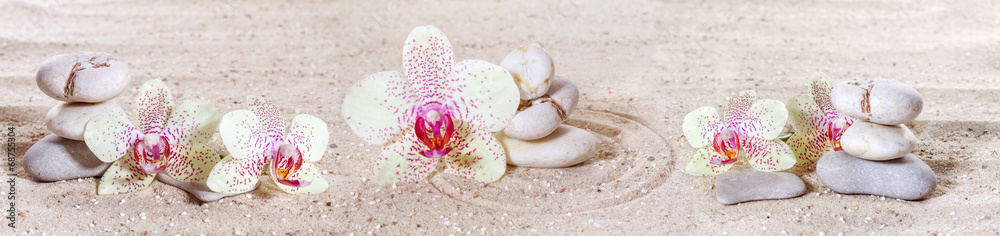 Fototapety, obrazy: Panorama with orchids and zen stones in the sand