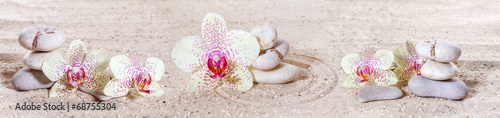Printed kitchen splashbacks Stones in Sand Panorama with orchids and zen stones in the sand