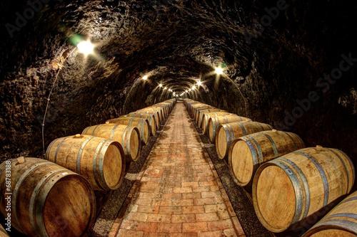 Fotografie, Obraz  Wine cellar in Tokaj, Hungary