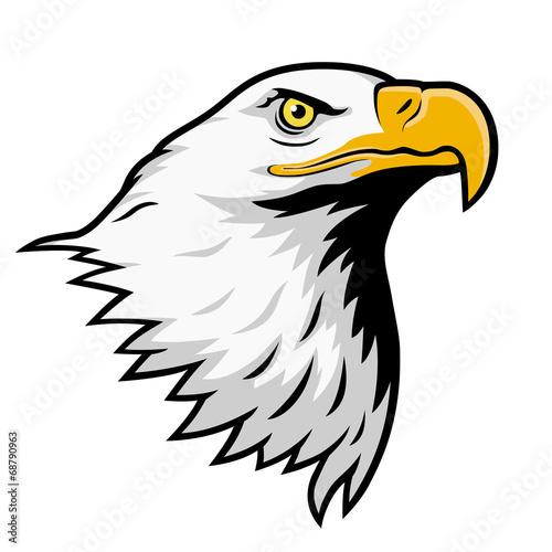 Photo  Bald eagle, American eagle, color version.