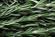 Seasoning Fresh Rosemary