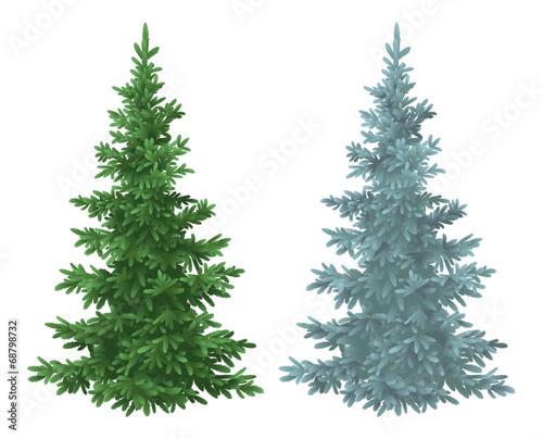 Fototapeta Christmas green and blue spruce fir trees obraz