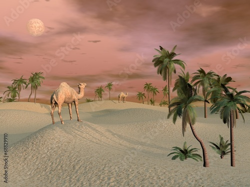Camels in the desert - 3D render - 68829910