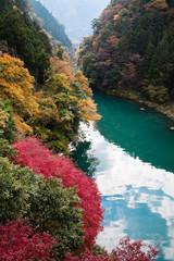 Fototapeta Rzeki i Jeziora 白丸湖の紅葉