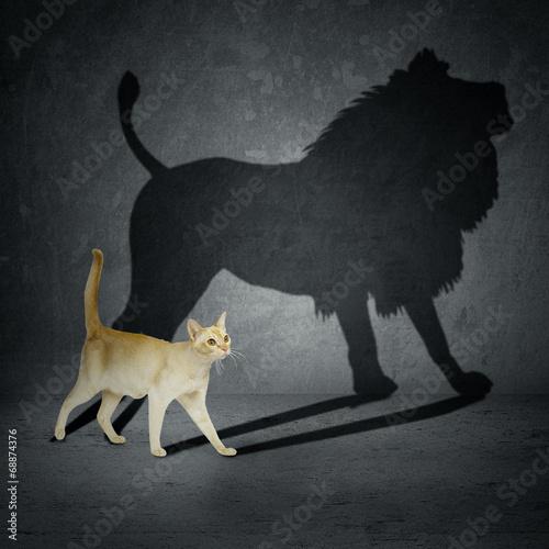 Obraz na plátne Cat with lion shadow