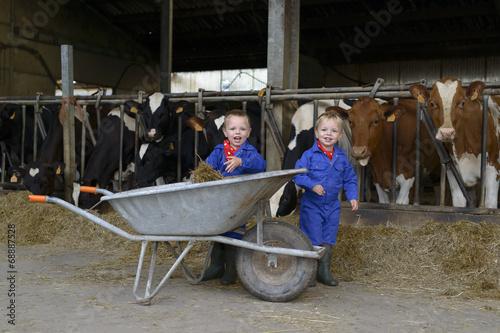 Fotografiet  kindere op de boerderij