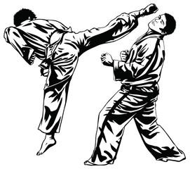 Fototapeta Sztuki walki Tae Kwon Do