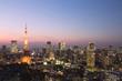 [東京都市風景]きれいな夕焼けトワイライトの東京タワーと高層ビル-504