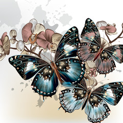 Fototapeta Storczyki Fashion vector background with butterflies