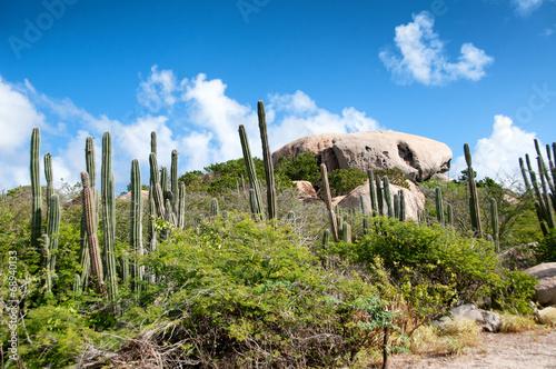 Photo  Ayo Felsformation auf Aruba in der Karibik